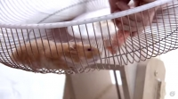 The Hamster Stunt: Charlie the Hero