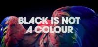 Made Of Black